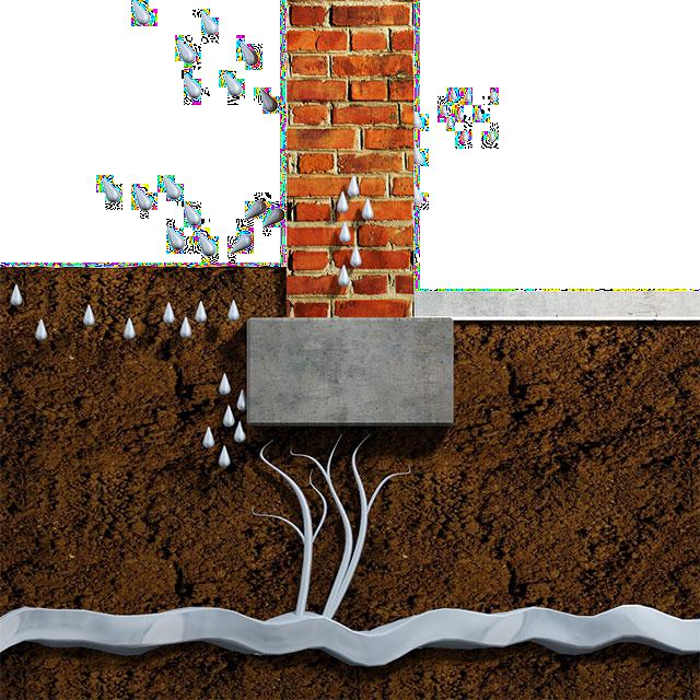 Vlhká zeď s plísní